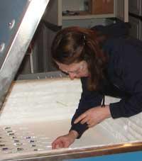 Lorraine Mullett in Studio